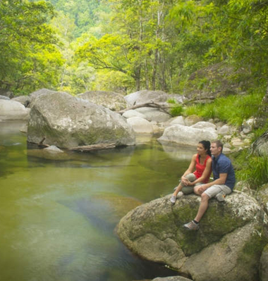 Guided Dreamtime Walk at Mossman Gorge